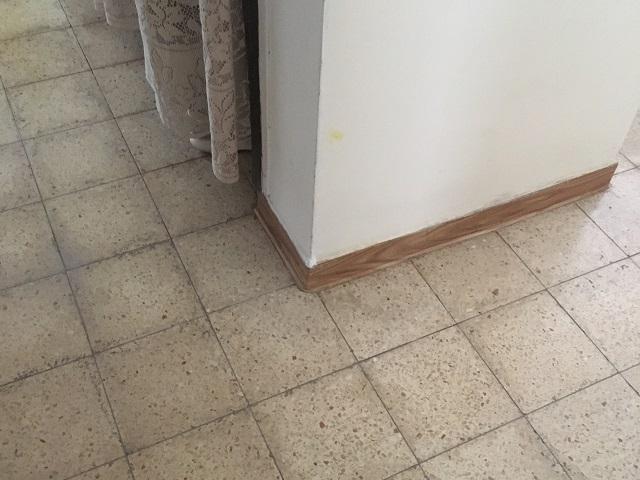 התמונה הרגילה של הרצפה לא ניתן לזהות בעין אנושית לעולם את הנזילה תחת הריצוף